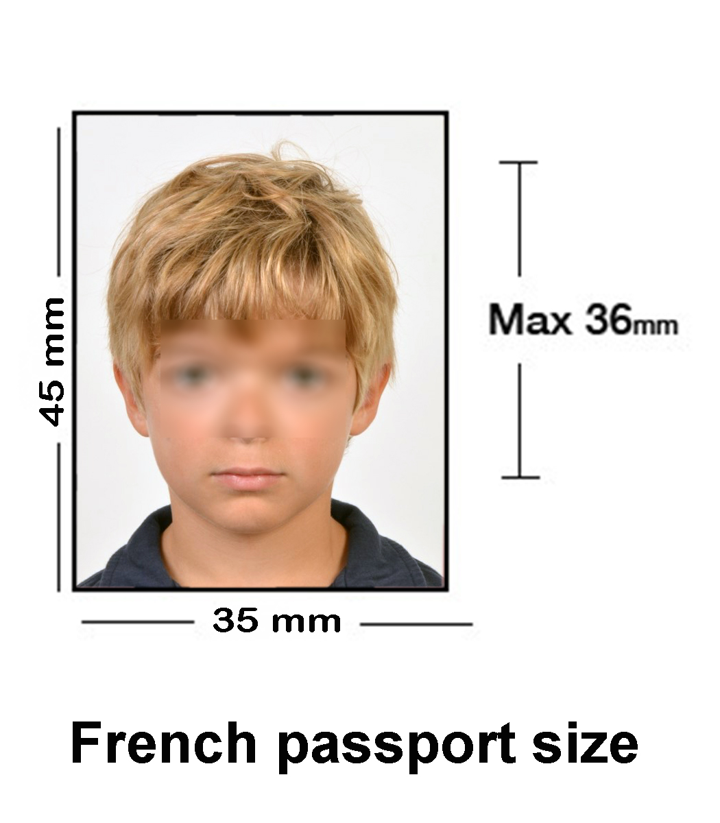 french-passport-size-01