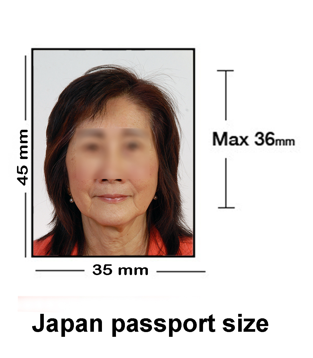 japan-passport-size-01