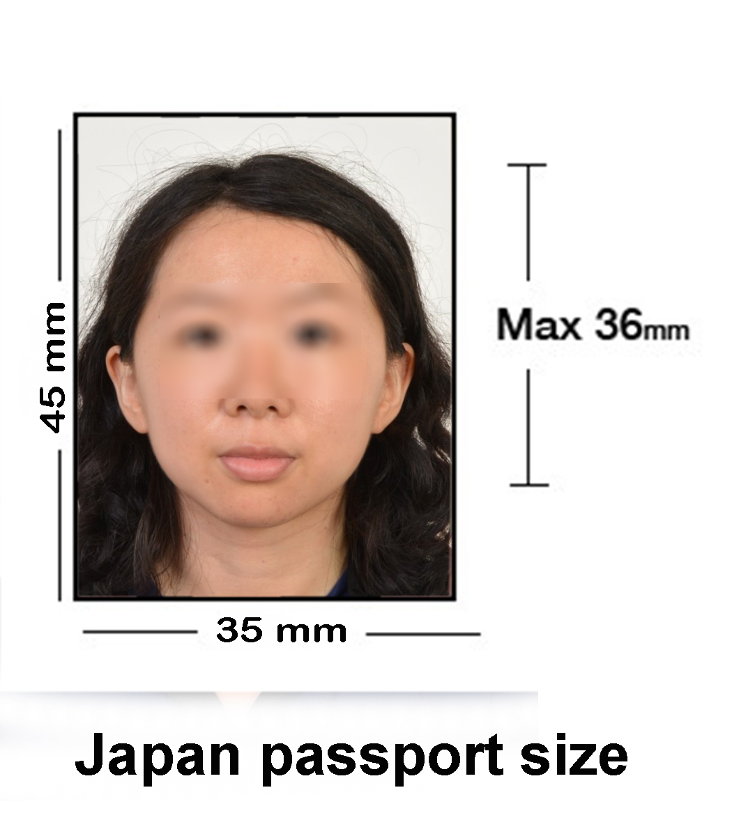 japan-passport-size-02